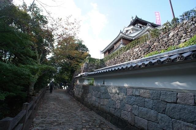 fukuchiyama04-s2