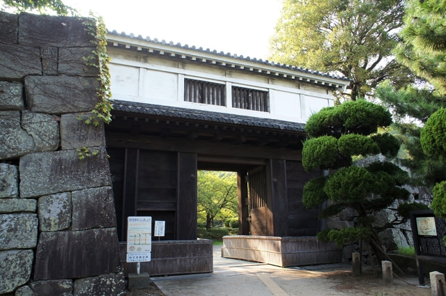 wakayama42a1-s