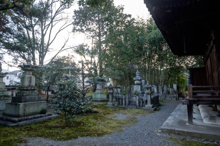 sakamoto_5154