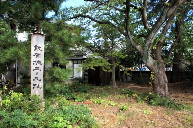 tsuruga01-s