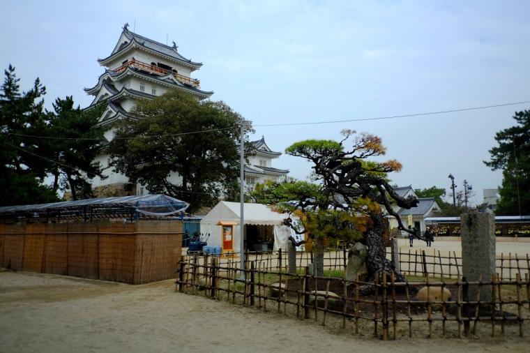 fukuyama26