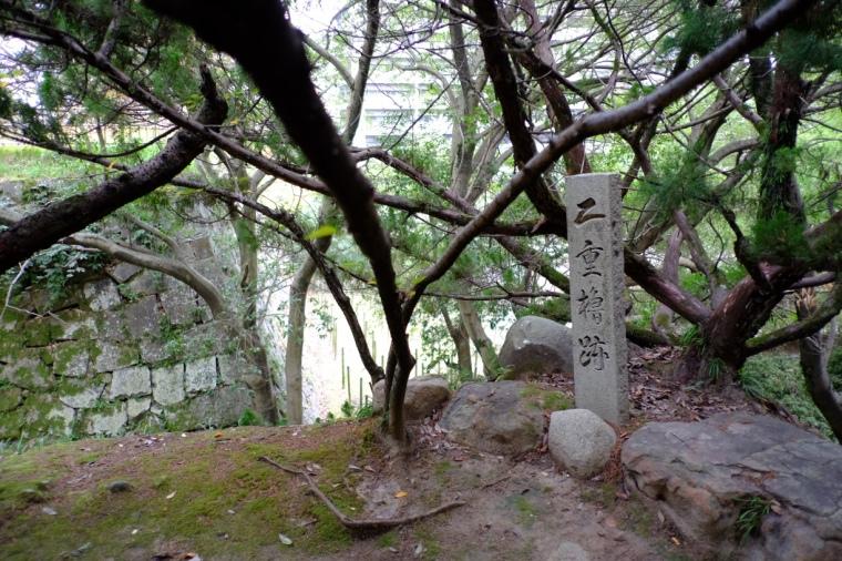 fukuyama33