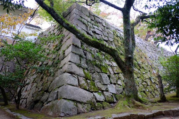 fukuyama34