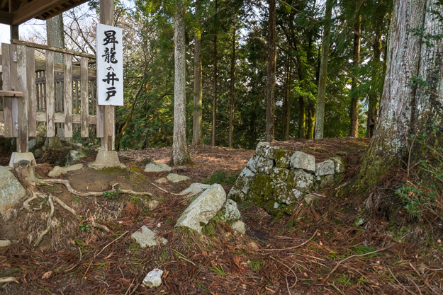 iwamura-7455