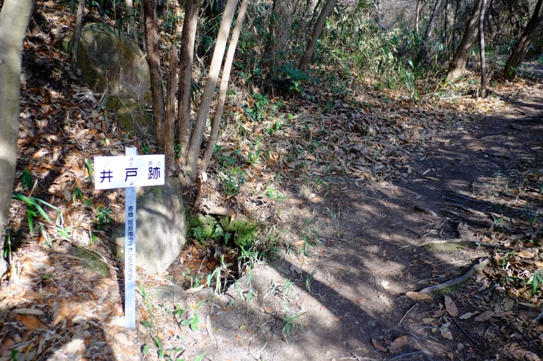 kouyama12
