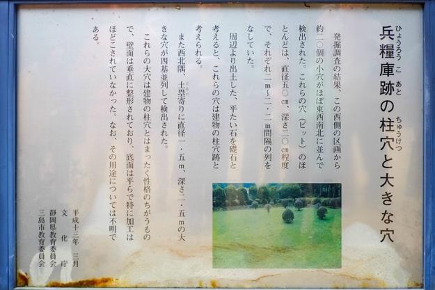 yamanaka2-10s