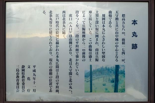 yamanaka2-14