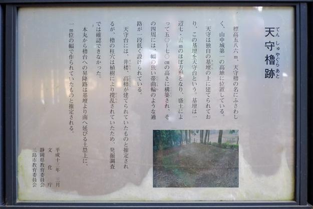 yamanaka2-16s