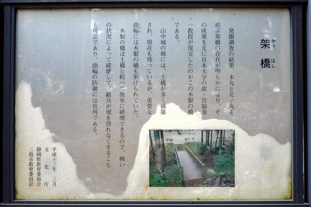 yamanaka2-22