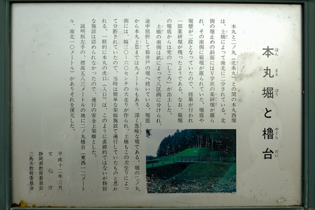 yamanaka2-27
