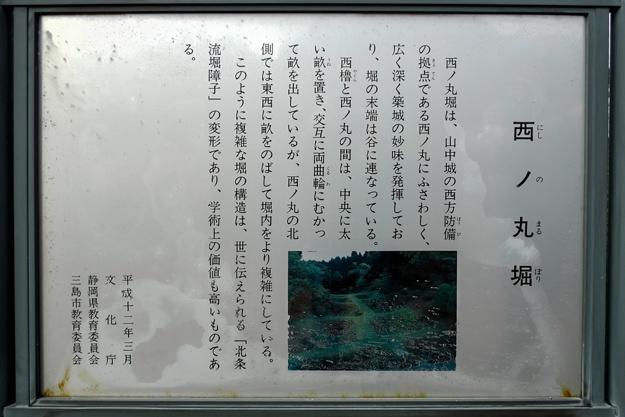 yamanaka2-46