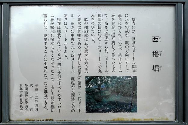 yamanaka2-55
