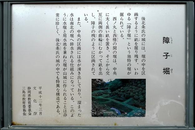 yamanaka2-58