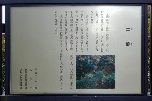 yamanaka2-63a