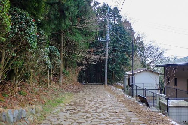 yamanaka2-82