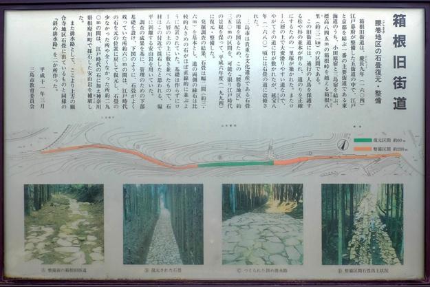 yamanaka2-83