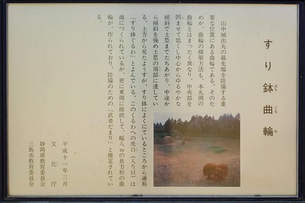 yamanaka2-89