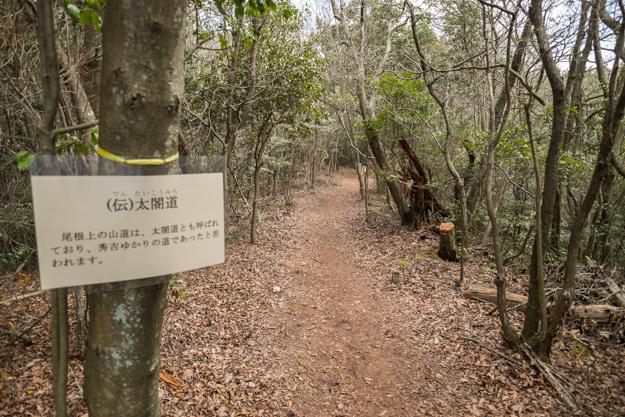 hiraiyama-9442