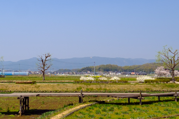 b-takamatsu-9761a-9714