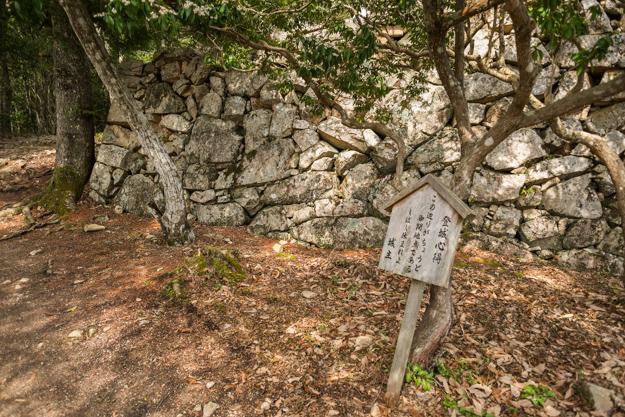 b_matsuyama-9180
