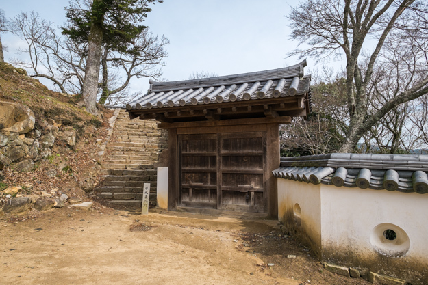 b_matsuyama-9226