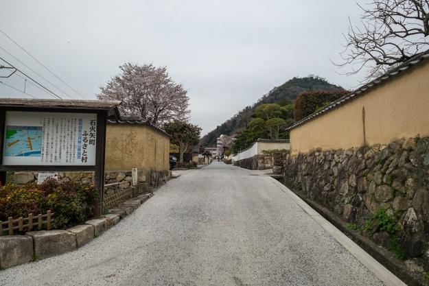 b_matsuyama-9339