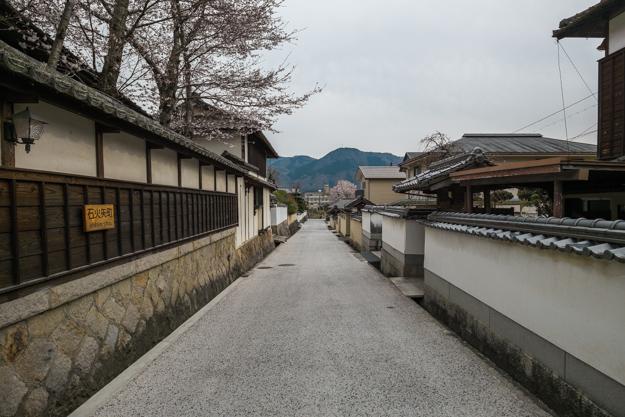 b_matsuyama-9355