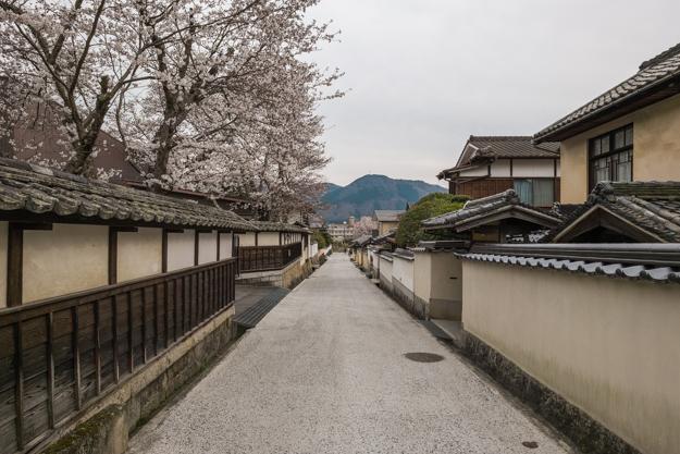 b_matsuyama-9377
