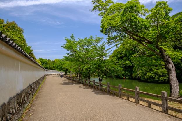 otokoyama-2178