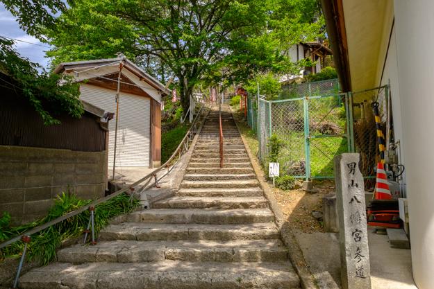 otokoyama-2188
