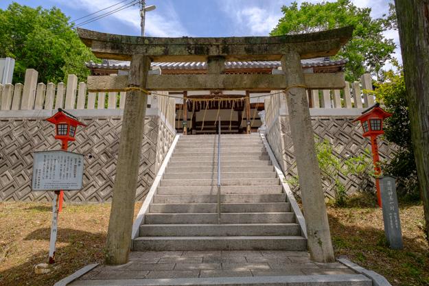 otokoyama-2193