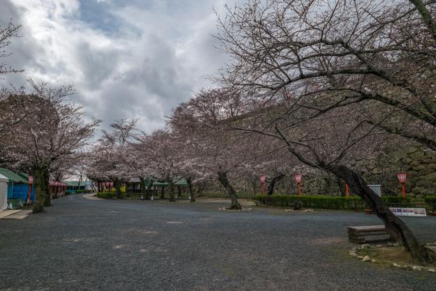 tsuyama-8914