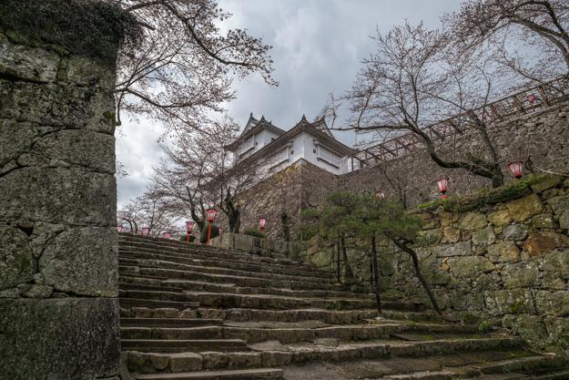 tsuyama-8919