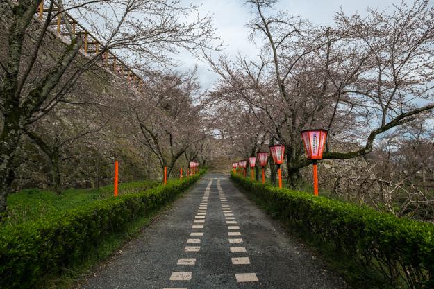 tsuyama-8923