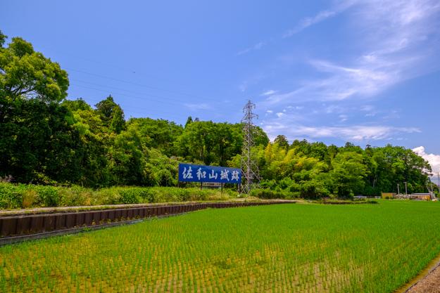 sawayama-2525a-2542
