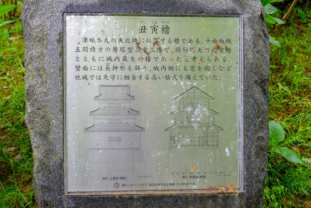 tsu-1299