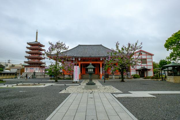 tsu-omake-1240a-1213