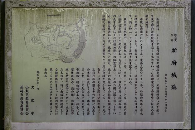 shinpu-4076