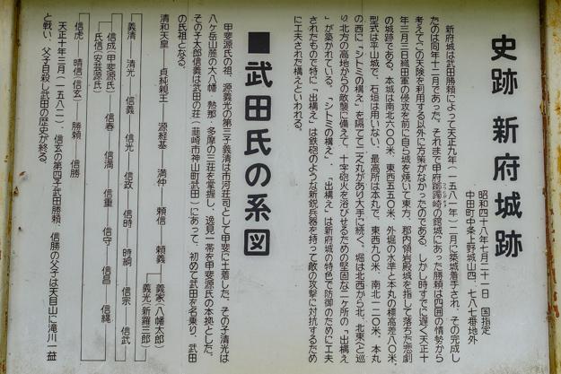 shinpu-4077