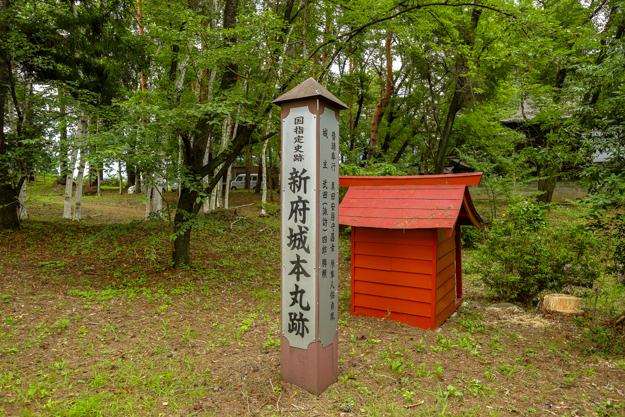 shinpu-4100