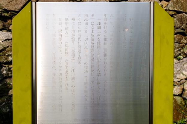 tamaru-3479