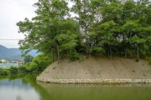 tsutsuji-4191