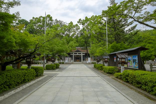 tsutsuji-4213