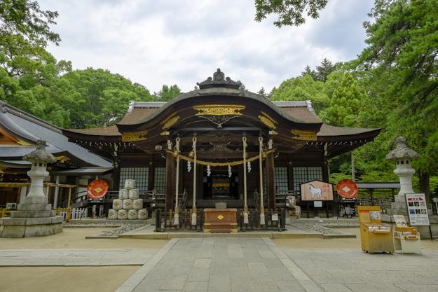 tsutsuji-4215
