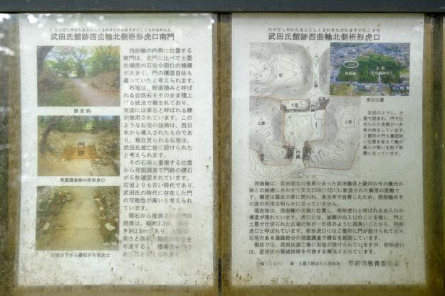 tsutsuji-4274