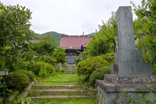 tsutsuji-4291