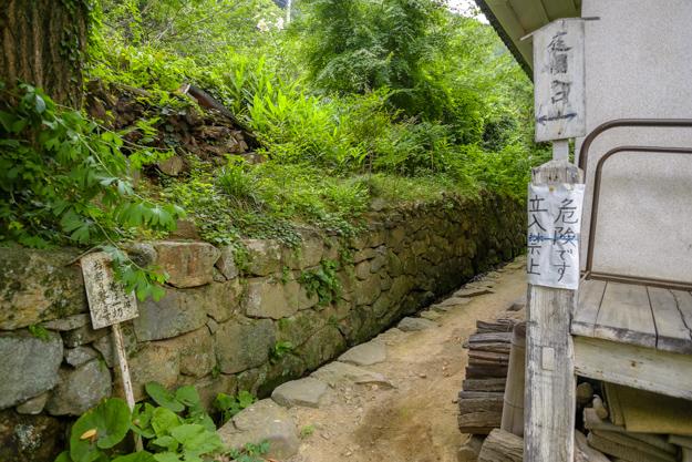 tsutsuji-4292a-4305