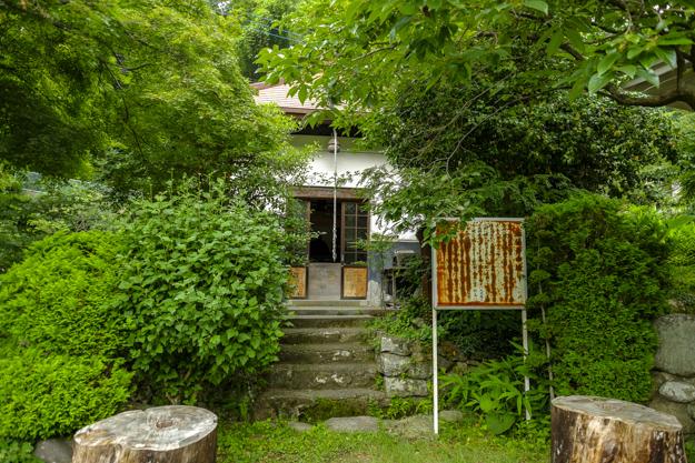 tsutsuji-4306a-4293