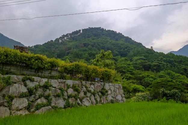詰城「要害山城」跡