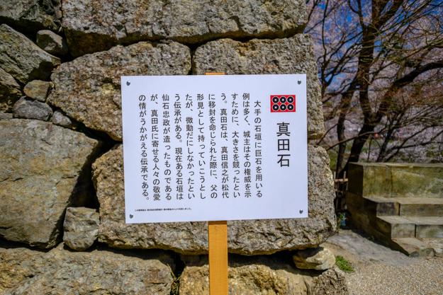 ueda-0700